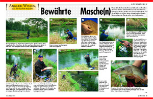 http://brunobrennsteiner.de/Presse/Barbenfeedern.jpg
