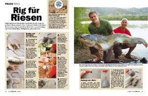 http://brunobrennsteiner.de/Presse/Pelletrig.jpg
